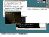 MPlayer pod OpenDarwin